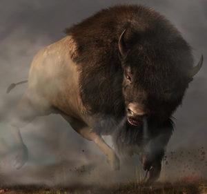 Stoere bizon