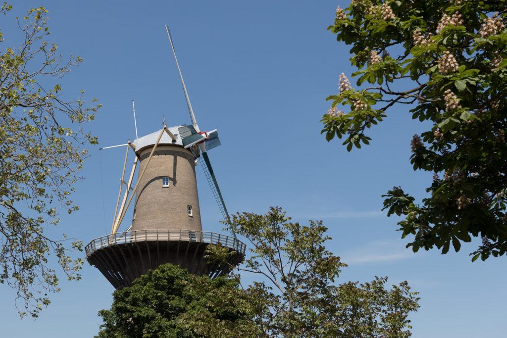 De Nolet molen Schiedam