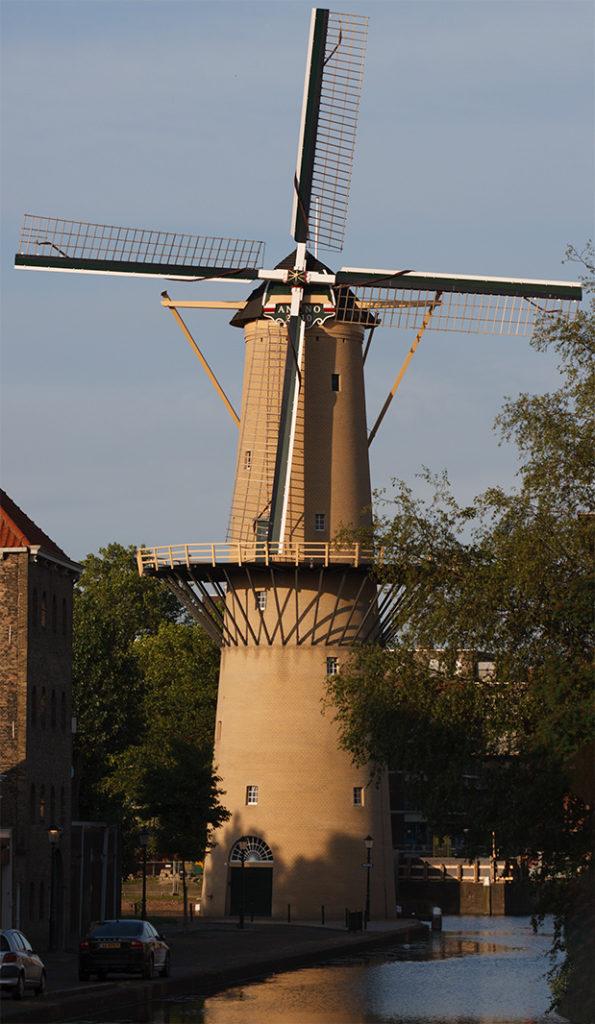 Schiedamse molens - De Kameel